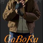 GaBoReL